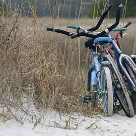 Deborah M Rinaldi-Roberts - Bicycles Along the Dunes