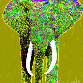 Wingsdomain Art and Photography - Big Elephant 20130201p60