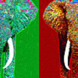 Wingsdomain Art and Photography - Big Elephant Six 20130201