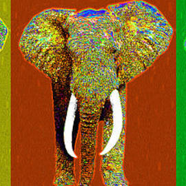Wingsdomain Art and Photography - Big Elephant Three 20130201v1