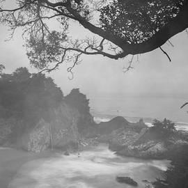 Dustin  LeFevre - Big Sur