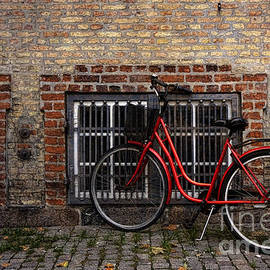 Inge Riis McDonald - Bike in old Copenhagen