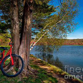 Mark Miller - Biking to Horseshoe Lake