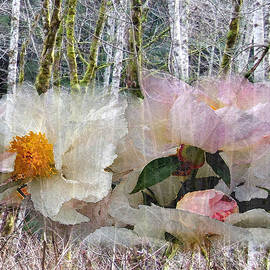 Lyn  Perry - Birch Grove and Peonies