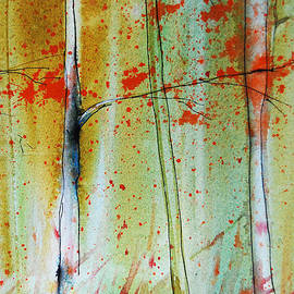 Jani Freimann - Birch Tree Forest Closeup