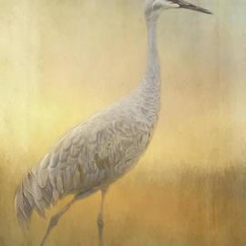 Jordan Blackstone - Bird Art - Walking Away