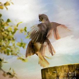 Kerri Farley - Bird Dance