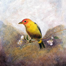 Steve McArthur - Bird On A Limb