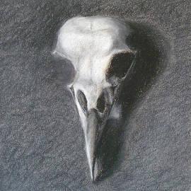 Elizabeth B Tucker  - Bird Skull