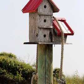 Cynthia Guinn - Birdhouse At The Beach