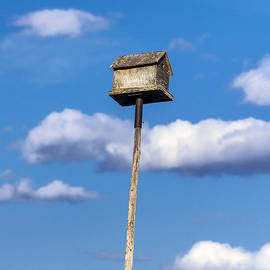 John Greim - Birdhouse Skies