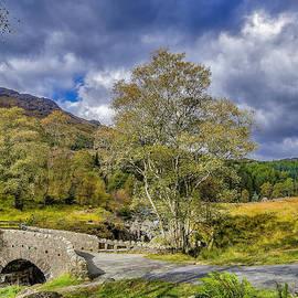 Trevor Kersley - Birks Bridge Duddon Valley