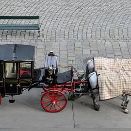 Imran Ahmed - Black and red horse carriage - Vienna Austria