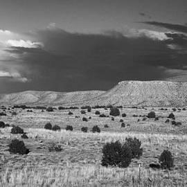Valerie Loop - Black and white desert
