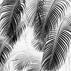 Karon Melillo DeVega - Black and White Palm Fronds