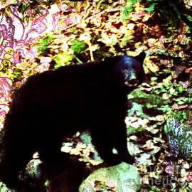 Kim Prowse - Black Bear
