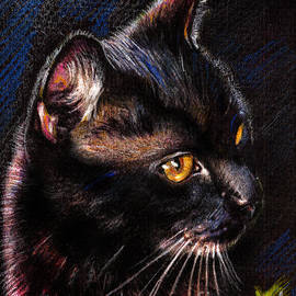 Daliana Pacuraru - Black Cat drawing portrait