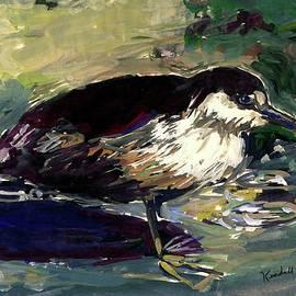 Kendall Kessler - Black Crowned Night Heron