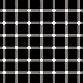 Nick Kloepping - Black Dot Illusion