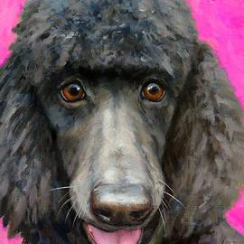 Dottie Dracos - Black Poodle on Hot Pink