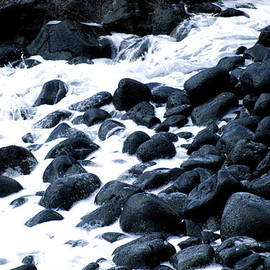 Lehua Pekelo-Stearns - Black rocks along the Puna coast
