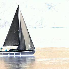 Kathy Barney - Grey Sails
