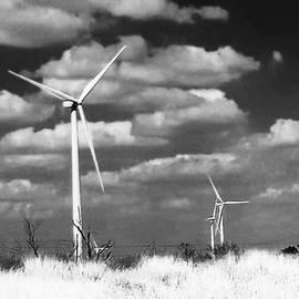 Sean Wray - Wind Farm