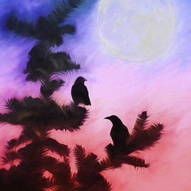 Darren Fisher - Blackbirds of the Night