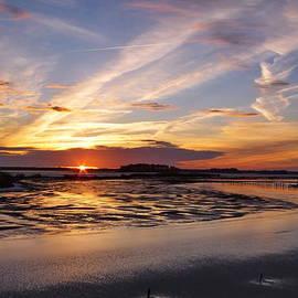 Francie Davis - Blackwater National Wildlife Refuge Sunset 4