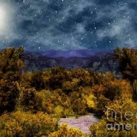 RC deWinter - Blanket of Stars