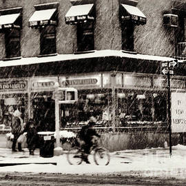 Miriam Danar - Blizzard - Cycle in the Snow