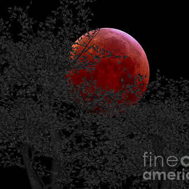 Cheryl Young - Blood Moon