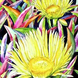Eva Nichols - Blooming Iceplant
