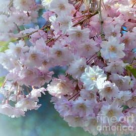 Miriam Danar - Blossoming Tree - Early Spring - Detail