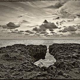 Bruce Bain - Blowing Rocks Preserve