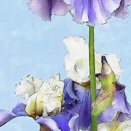 Jane Schnetlage - Blue And White Iris