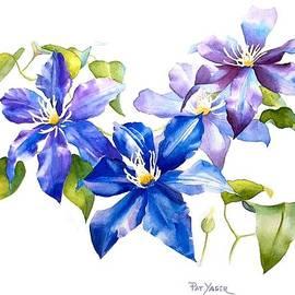 Pat Yager - Blue Clematis