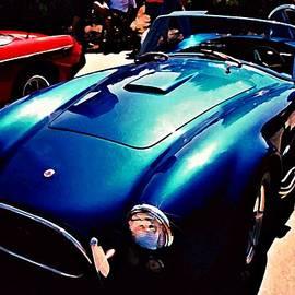 Stanley  Funk - Blue Cobra