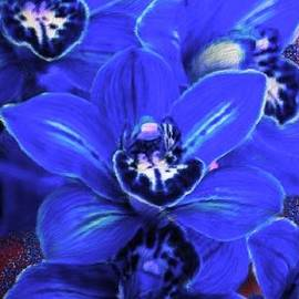 Bruce Nutting - Blue Cymbidiums