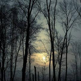 Karol  Livote - Blue Daybreak