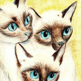 Joy Reese - Blue Eyes