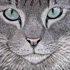 Silas Newman  - Blue Eyes