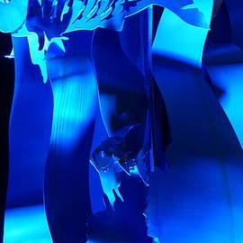 Rob Luzier - Blue fish art.