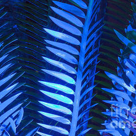 Darleen Stry - Blue Frond Abstract