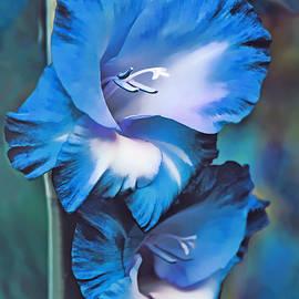 Jennie Marie Schell - Blue Gladiola Flowers
