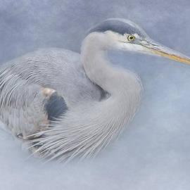 Jordan Blackstone - Blue Heron Art - Creativity