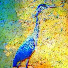 Candee Lucas - Blue Heron