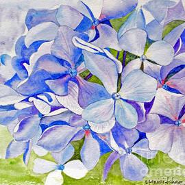Studio A - Blue Hydrangea