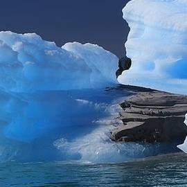 Mo Barton - Blue Iceberg 2