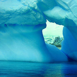 Amanda Stadther - Blue Iceberg Antarctica